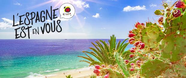 Le meilleur des îles Canaries : bons plans et guide de voyage