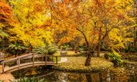Les plus belles destinations à visiter en automne depuis votre canapé !