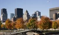 10 activités gratuites à faire à Montréal