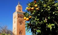 Top 10 des lieux à visiter à Marrakech