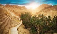 6 façons de voyager en Tunisie depuis chez soi