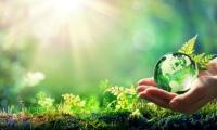 Écotourisme : comment voyager éco-responsable ?