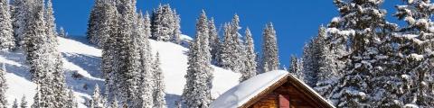 Le ski