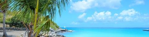 Location de voiture en Martinique : nos conseils !