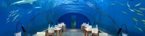 10 restaurants situés dans des endroits sensationnels