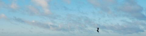 Top 5 des spots de kitesurf incontournables en Europe
