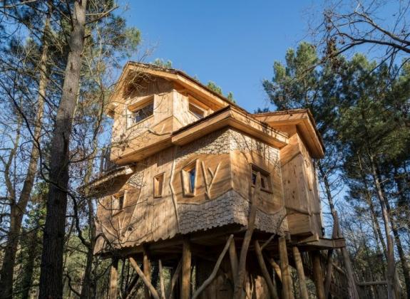 Cooconing & chaleureuse : découvrez cette maison dans les arbres