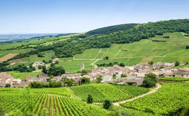 Week-end au vert : 2j/1n en Normandie, Vendée, Bourgogne, Alpes...