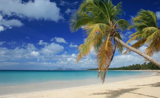 Caraïbes : séjours 7j/5n et plus cet hiver, jusqu'à - 300 €/dossier