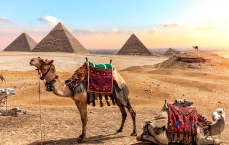 Renforcement des liaisons en Egypte !