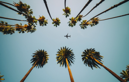 Programme de vols d'Air France hiver 2021 !