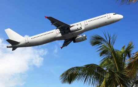 Les billets d'avion bien-sûr !