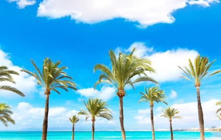 Une nouvelle destination vers les Baléares au départ de Toulon