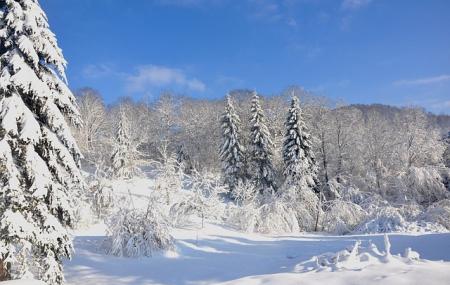Louez vos skis moins cher dans les Vosges !
