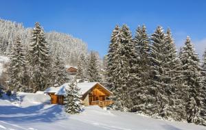 Black Friday, ski vacances de février : 8j/7n en résidence, proche des pistes, - 70%