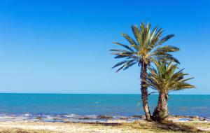 Djerba : vente flash, séjour 8j/7n en hôtel bord de mer tout compris + vols
