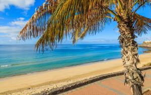 Canaries : locations entre particulier, séjours 1 à 7 nuits, dispos dernière minute, été indien