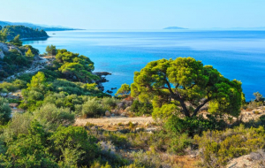 Grèce, Péninsule Chalcidique : séjour 8j/7n en hôtel 4* bord de mer, demi-pension + vols