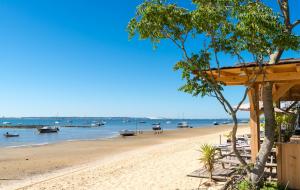 Landes, 1ère minute été : locations 8j/7n en résidences avec piscine, proche plages, - 20%