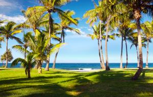 Île de la Réunion : séjour 9j/7n en hôtel front de mer + petits-déjeuners, vols inclus