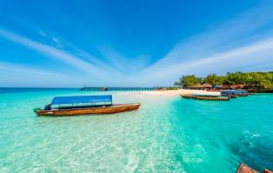 Séjours : 1ère minute hiver, 8j/7n + vols en Rép. Dominicaine, à Zanzibar...