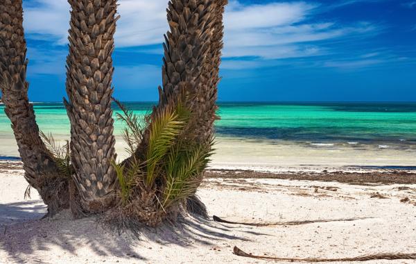 Djerba : vacances de la Toussaint, séjour 8j/7n en hôtel 4* tout compris + vols