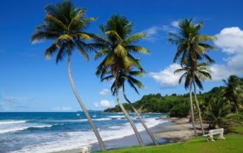Des vols low-cost pour les Caraïbes en 2016