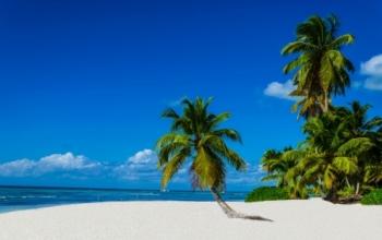 Les plages de rêve...