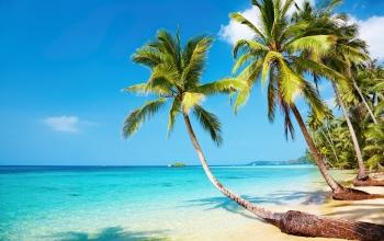 Les plages paradisiaques !