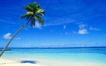 Mer et océans à portée de rêve !