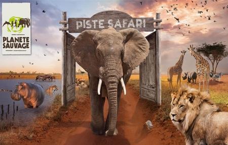 Planète Sauvage, Vendée : vente flash, 4j/3n en résidence + entrée au safari