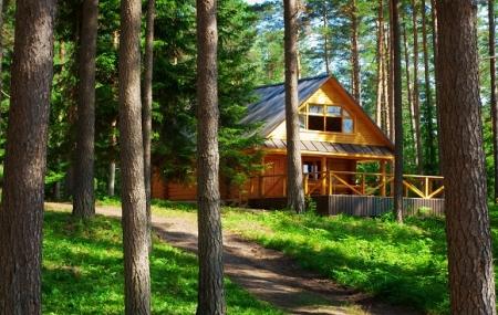 Camping Nature cet été : dès 120 € la semaine en mobilhome, chalet ou lodge