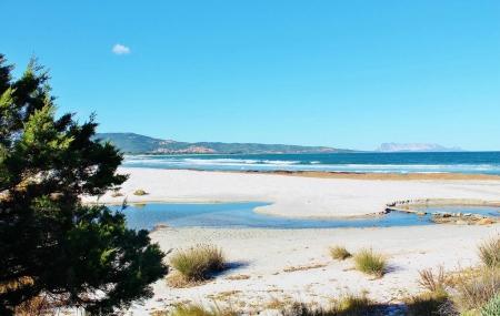 Sardaigne : 8j/7n hôtel au bord de la mer dès 87 €/pers.