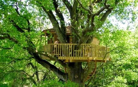 Vendée : 2j/1n en cabane dans les arbres + petit-déjeuner, Puy du Fou à 30 min en voiture