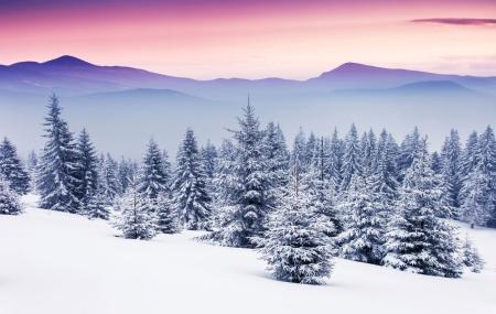 Ski, Noël & Nouvel An : locations 8j/7n en résidence dans les Alpes & Pyrénées