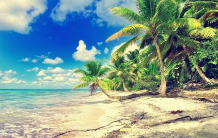 Rép. Dominicaine : séjour 9j/7n en hôtel 4* tout compris + vols, - 24%
