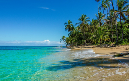 Costa Rica : séjour 9j/7n en club + demi-pension + 2 excursions + vols