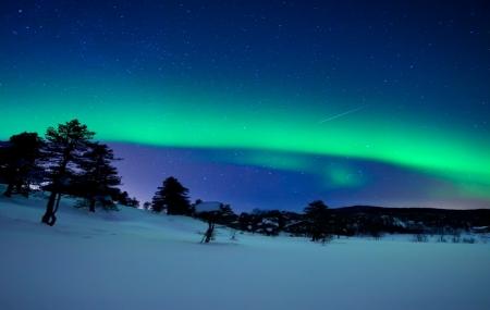 Croisières Norvège : aurores boréales et cercle arctique, 7 à 11 jours en pension complète