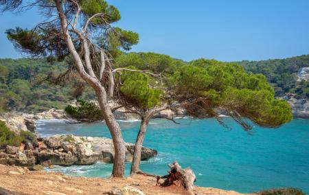 Majorque : séjours 8j/7n en hôtels 3* à 5* + vols, pension selon offres