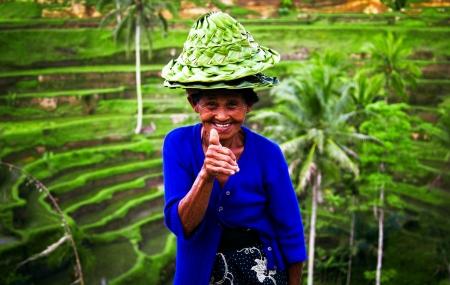 Bali : vente flash, combiné 9j/7n en hôtels 4* et 5* avec piscines privées + vols