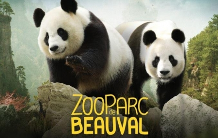 Zoo de Beauval : 2j/1n en hôtel 3* + petit-déjeuner + entrée 1 jour au Zoo