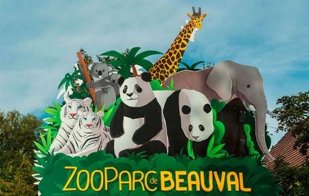 Zoo de Beauval : vente flash, 2j/1n en résidence 3* + petit-déjeuner + entrée ZooParc