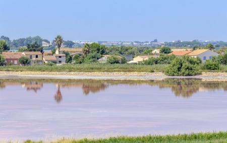 Camargue, Arles : première minute, week-end 2j/1n ou plus en club tout compris, - 60%