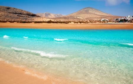 Séjours : 1ère minute, séjours 8j/7n en  Tunisie, aux Canaries...