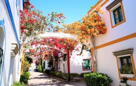 Canaries : circuit 8j/7n en hôtels 3* + pension complète + excursions & vols