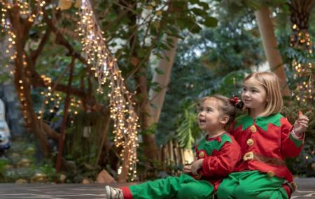 Center Parcs, vacances de Noël & Nouvel An : week-ends 3j/2 ou plus en cottage, - 25%