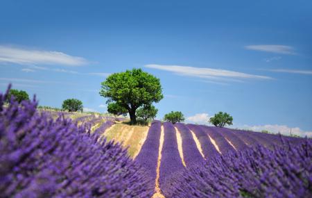 Provence-Alpes-Côte-d'Azur : 2j/1n ou + en hôtel ou résidence + petit-déjeuner, - 52%