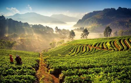 Thaïlande : combiné Bangkok & Phuket 2 semaines en hôtels + petits-déjeuners, visites + vols