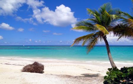 Rép. Dominicaine : séjour 9j/7n en hôtel 5* tout compris + vols, - 28%