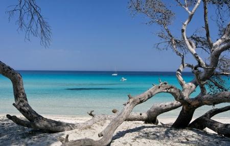 Corse : 8j/7n en résidences 3* à proximité des plages, dispos printemps/été